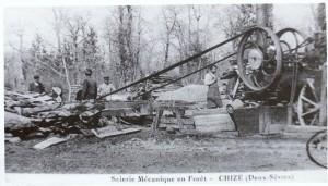 scierie mécanique en forêt de Chizé